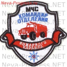 Badge EMERCOM of Russia the shield with the ribbon of the Ministry of emergency squad of the fire guard (white background)
