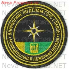 Badge EMERCOM of Russia Management on Affairs of GO CHS of a city of Penza the Municipal civil protection