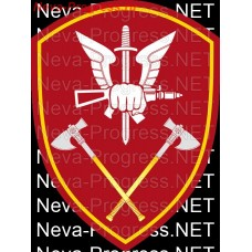 Patch - the insignia for the functional purpose of military servants and officers of the management bodies of the special forces of the Volga Federal district of national guard troops of the Russian Federation, Regardie, national guard RF (maroon, olive,