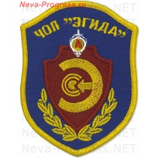 Patch private security company (PSC) aegis