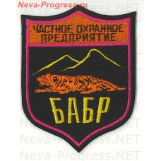 Patch private security company (PSC) Babr