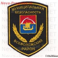 Stripe Municipal security Vsevolozhsk district