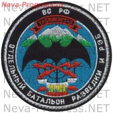 Patch 201 MSD Separate battalion intelligence and electronic warfare ( Tajikistan )