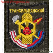Patch/h 19893 TRANSYLVANIAN 282nd TRAINING CENTRE TROOPS NBC(olive background)
