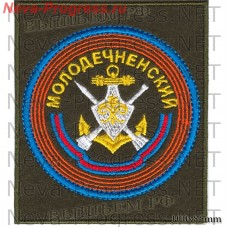 Patch 183 Molodechno guards order of Alexander Nevsky anti-aircraft missile brigade or a separate anti-aircraft missile regiment (military unit 95043)