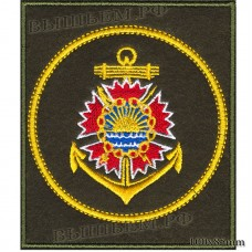 Patch Intelligence unit of the Pacific fleet of the Russian Federation (olive background, yellow edging)